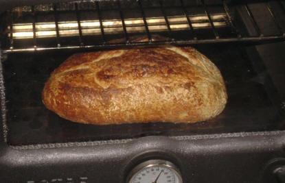 Baked bun, ready to serve.