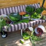 Ponderosa Porters - Cookstove Community
