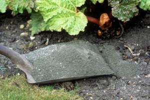 Ash in Garden - Cookstove Community