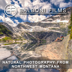 Balboni Films - Natural Photography from Northwest Montana