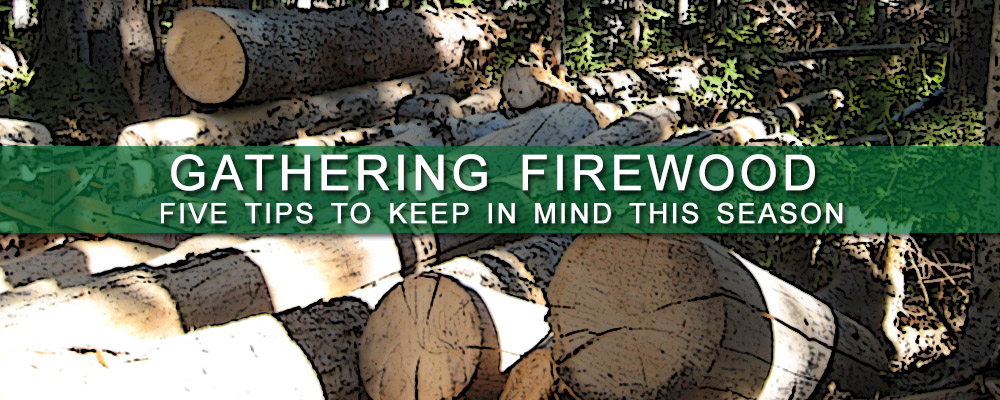 Gathering Firewood Banner - Cookstove Community